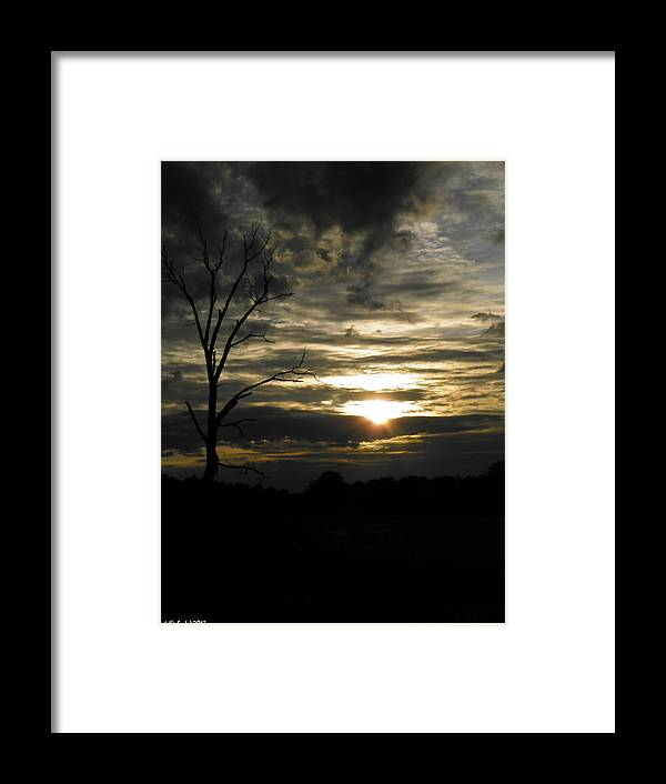 Dead Framed Print featuring the photograph Sunset Of Life by Nick Kirby
