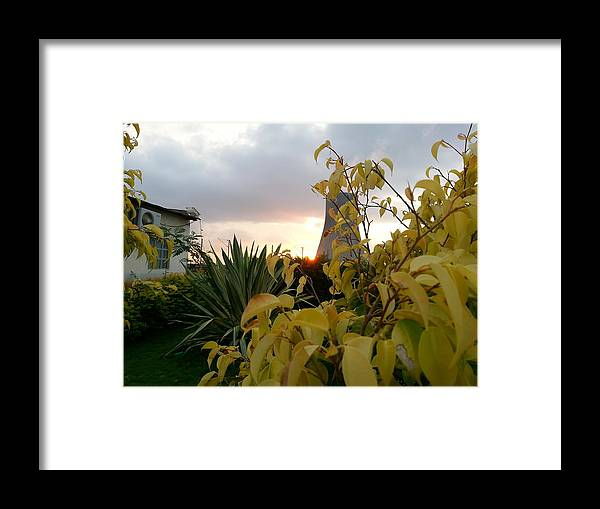 Landscape Framed Print featuring the photograph Sunset On Leaves by Abhishek Tiwary