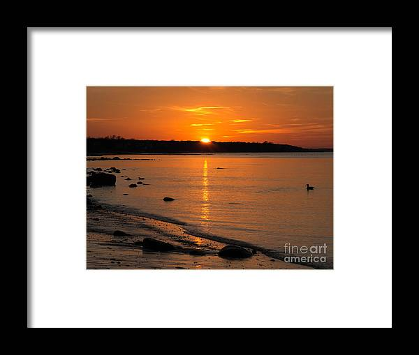 Duck Framed Print featuring the photograph Sunset Over Brewster Flats by Sue Zamecnik