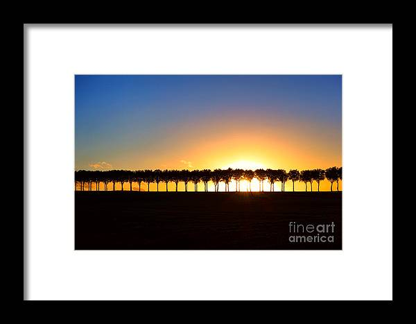 France Framed Print featuring the photograph Sunset Over Tree Lined Road by Olivier Le Queinec