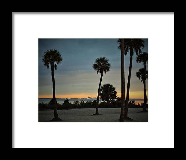 Palm Trees Framed Print featuring the photograph Sunset Palms by Mark Mitchell