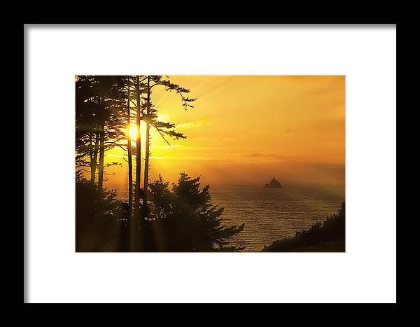 Lighthouse Framed Print featuring the photograph Sunset Thru The Trees by Andrew Soundarajan