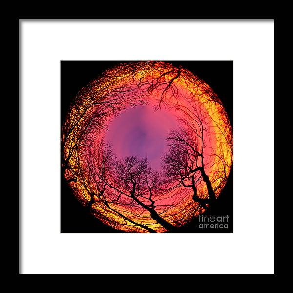 Sunsets Framed Print featuring the photograph Sunset World Of Trees by Terri Morris