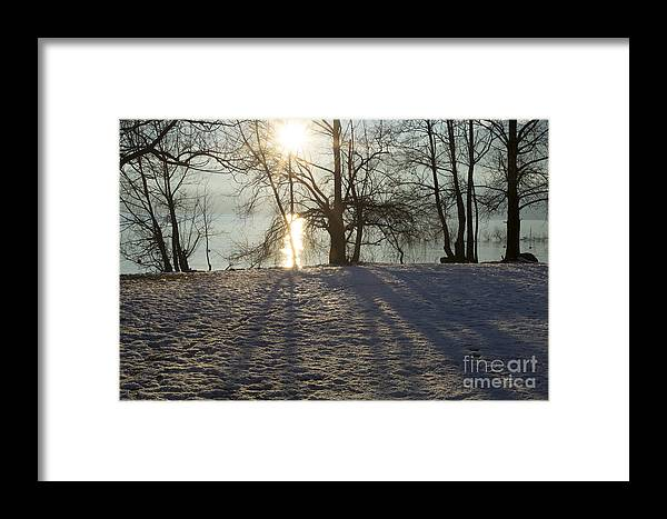 Sun Framed Print featuring the photograph Sunshine In Winter by Mats Silvan