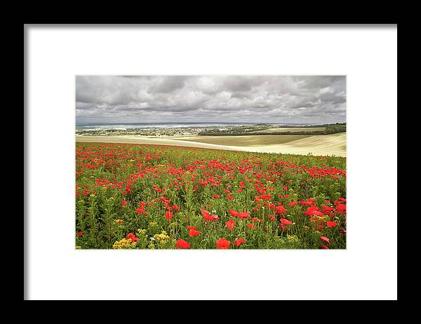 Scenics Framed Print featuring the photograph Sweeping Golden Fields by Getty Images