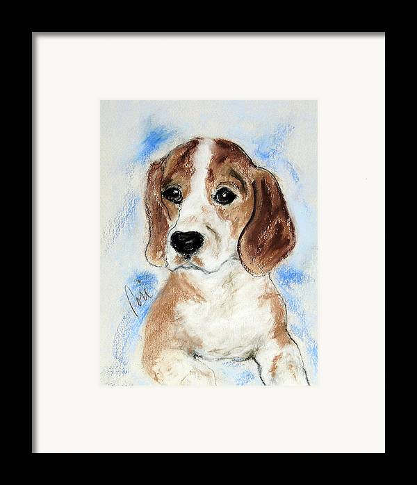 Dog Framed Print featuring the drawing Sweet Innocence by Cori Solomon