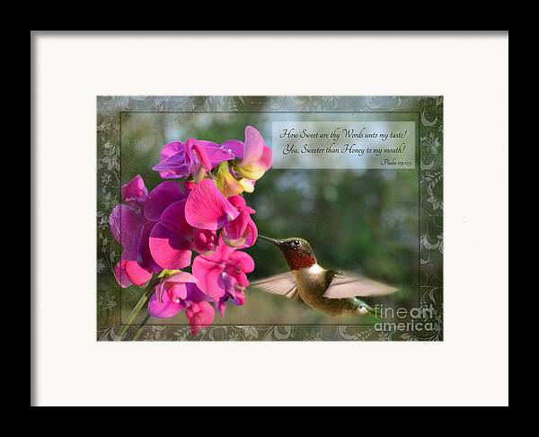 Nature Framed Print featuring the photograph Sweet Pea Hummingbird Iv With Verse by Debbie Portwood