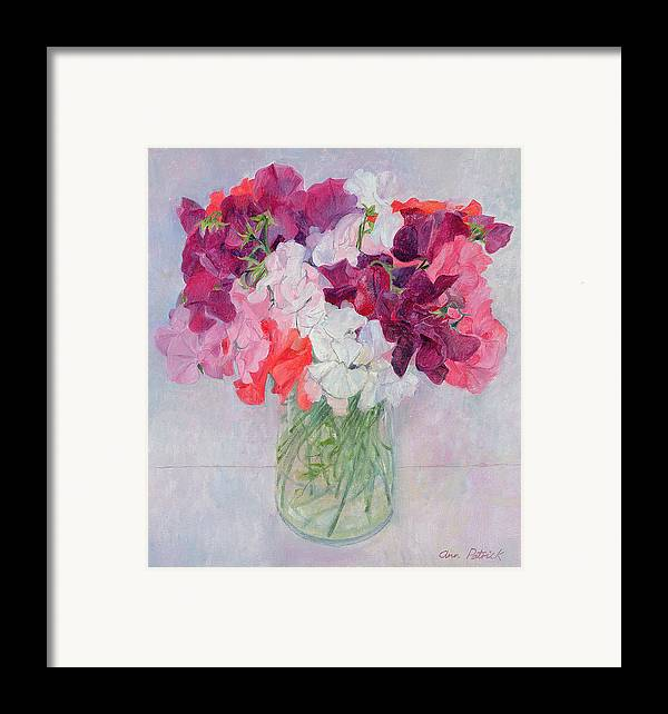 Pea Framed Print featuring the painting Sweet Peas by Ann Patrick
