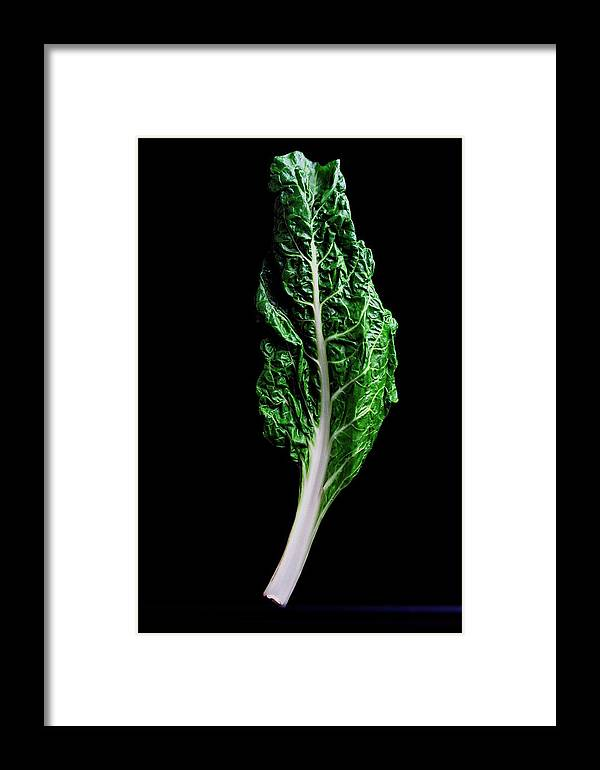 Fruits Framed Print featuring the photograph Swiss Chard by Romulo Yanes