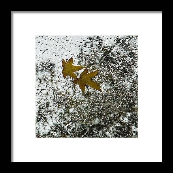 Georgia Mizuleva Framed Print featuring the photograph Symbols Of Autumn by Georgia Mizuleva