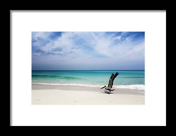 Landscape Framed Print featuring the photograph Takeoff by Florian Strohmaier