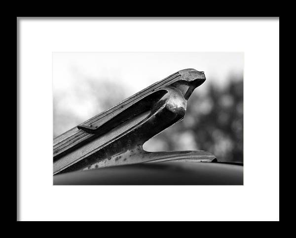 Sky's Framed Print featuring the photograph Taking Flight by David Lee Thompson