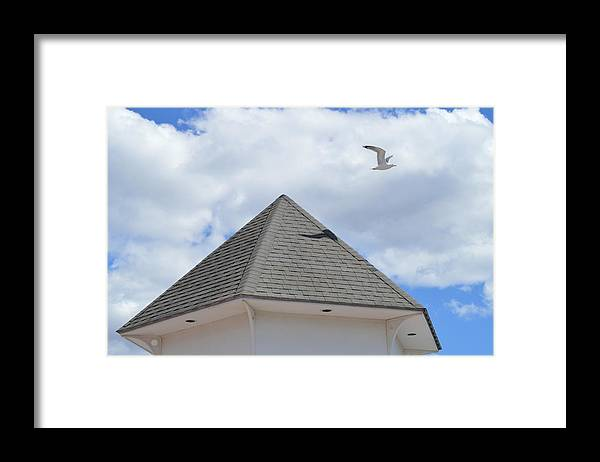 Gull Framed Print featuring the photograph Taking Off by Jessica Cruz