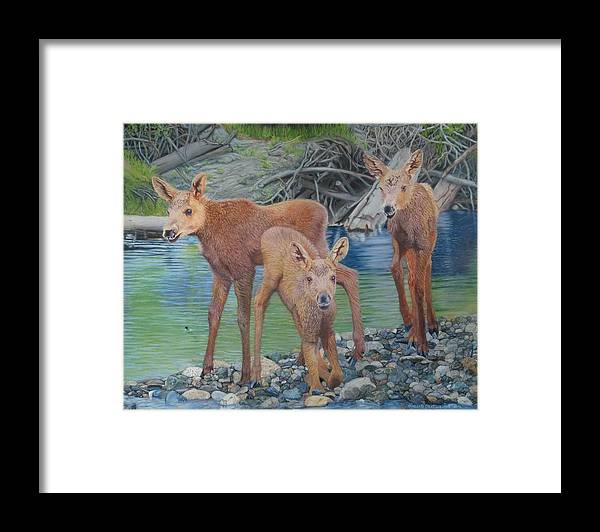 Animal Framed Print featuring the painting Talkeetna River Trio by Laurie Cartwright
