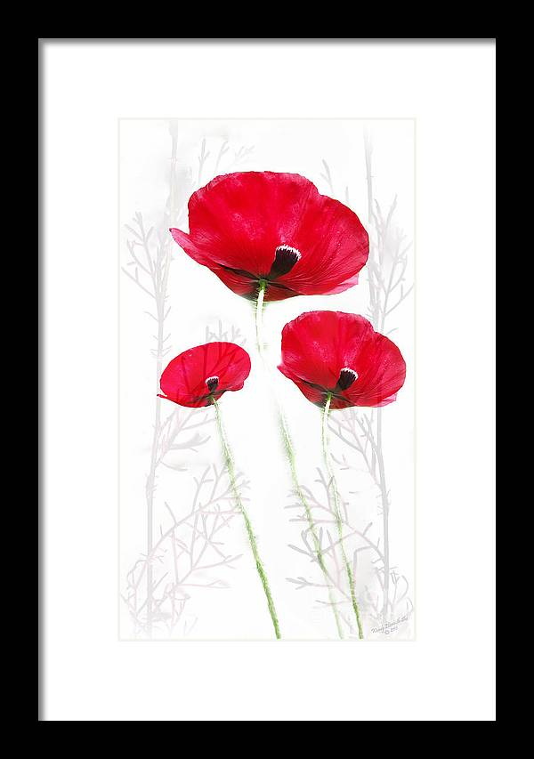 Poppy Framed Print featuring the digital art Tall Poppies by Wendy Slee