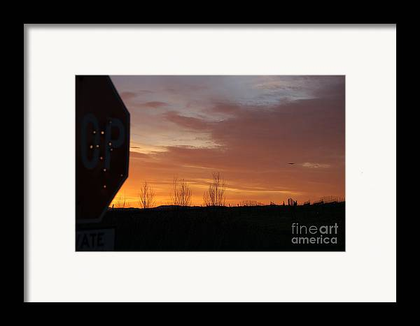 Stop Sign Framed Print featuring the photograph Target Practice by Jordan Rusin
