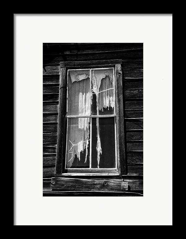 Black Framed Print featuring the photograph Tattered And Torn by Cat Connor