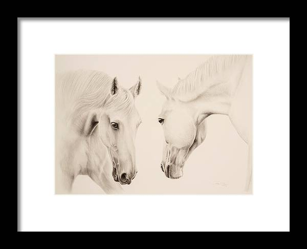 Tonya Butcher Framed Print featuring the drawing Tender Approach by Tonya Butcher