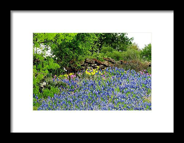 Texas Framed Print featuring the photograph Texas Bluebonnets And Stone Wall by Marilyn Burton