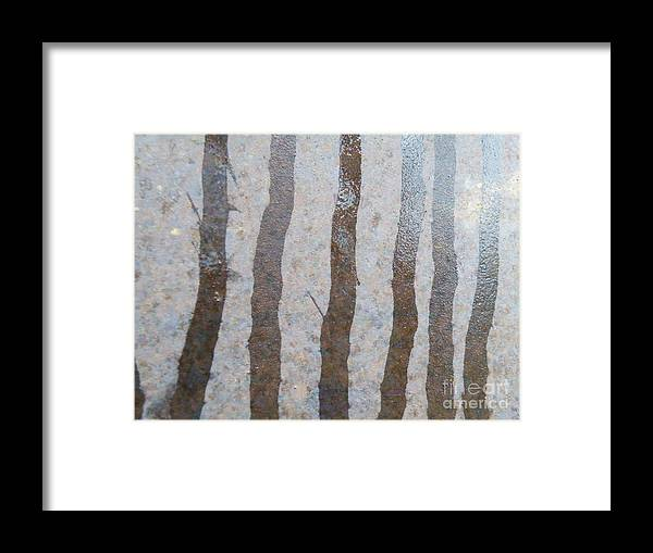 Texture Framed Print featuring the photograph Textural Forest by Brian Boyle