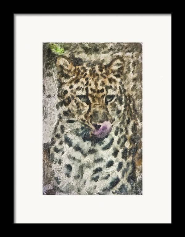 Cat Framed Print featuring the photograph That Was Delicious by Trish Tritz