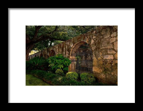 San Antonio Framed Print featuring the photograph The Alamo Garden by Tricia Marchlik
