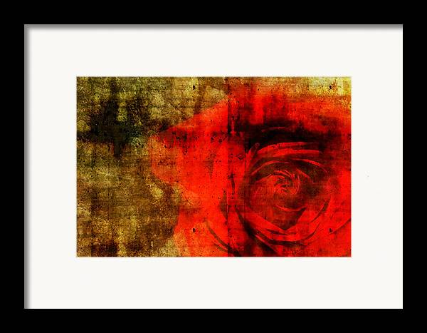 Brett Framed Print featuring the digital art The Allure Of A Rose by Brett Pfister