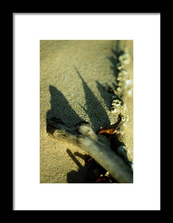 Shadow Framed Print featuring the photograph The Arrival by Rebecca Sherman
