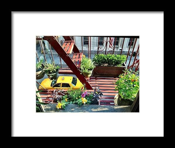 New York City Framed Print featuring the photograph The Back Deck by Donald Groves