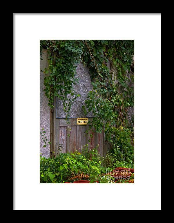 Barn Door Framed Print featuring the photograph The Barn Door by Carolyn Fox