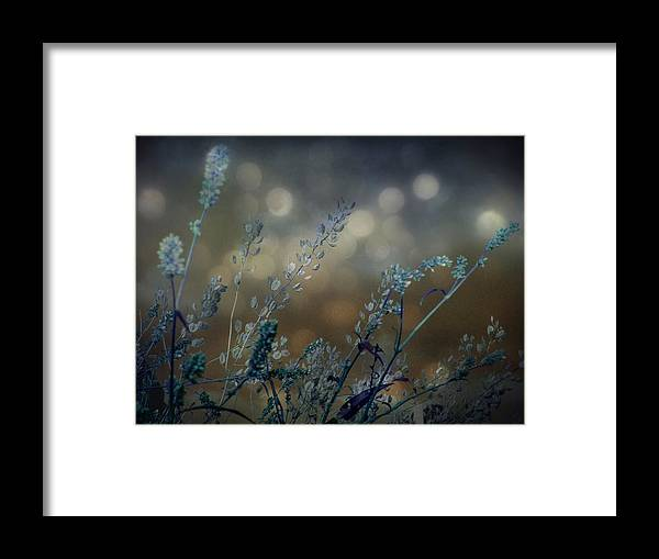 Blue Framed Print featuring the photograph The Bling Of Blue by Gothicrow Images