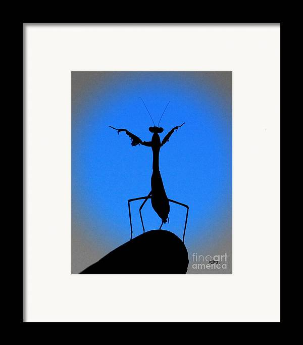 Conductor Framed Print featuring the photograph The Conductor by Patrick Witz