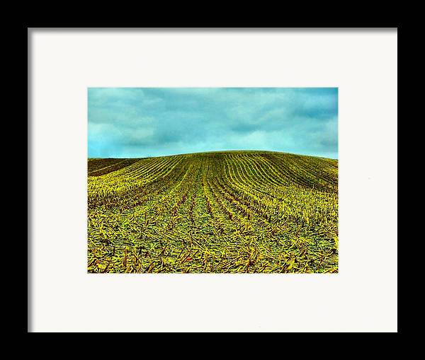 Indiana Corn Rows Framed Print featuring the photograph The Corn Rows by Julie Dant