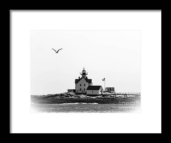 Lighthouse Framed Print featuring the photograph The Cuckolds Lighthouse by Brenda Giasson