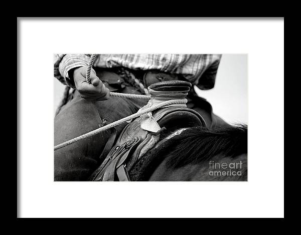 Branding Framed Print featuring the photograph The Dally by Eugene Erick