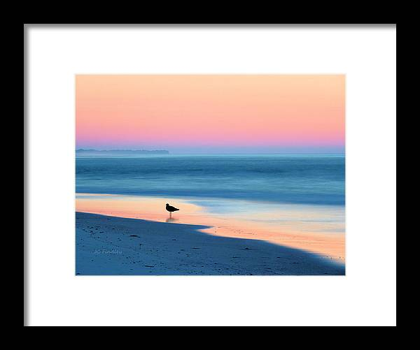 Beach Framed Print featuring the photograph The Day Begins by JC Findley
