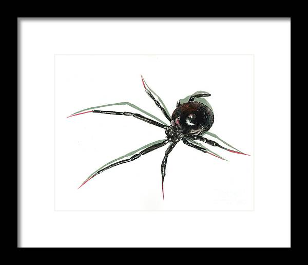 Spider Framed Print featuring the painting The Devil Wears Pink Toe Nails. by Richard Brooks