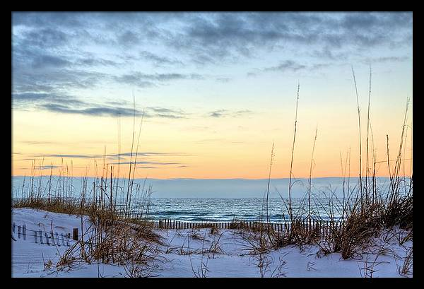 The Dunes of PC Beach by JC Findley