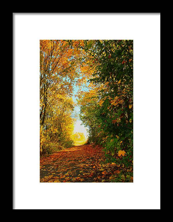 Nature Framed Print featuring the photograph The End Of The Road. by Daniele Zambardi