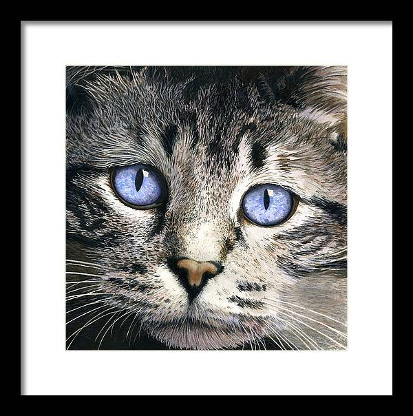 Cat Framed Print featuring the painting The Eyes Have It by Ted Head