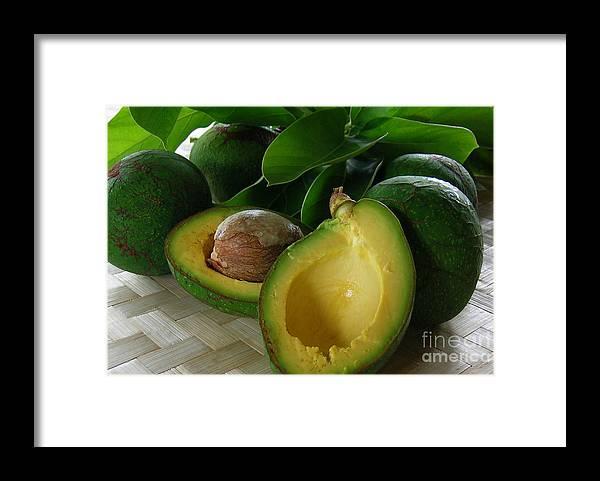 Fujikawa Avocado Framed Print featuring the photograph The Fujikawa Avocado by James Temple