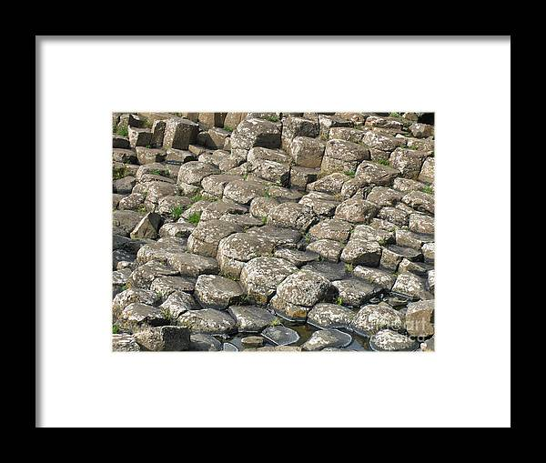Landscape Framed Print featuring the photograph The Giant Causeways by Brenda Brown