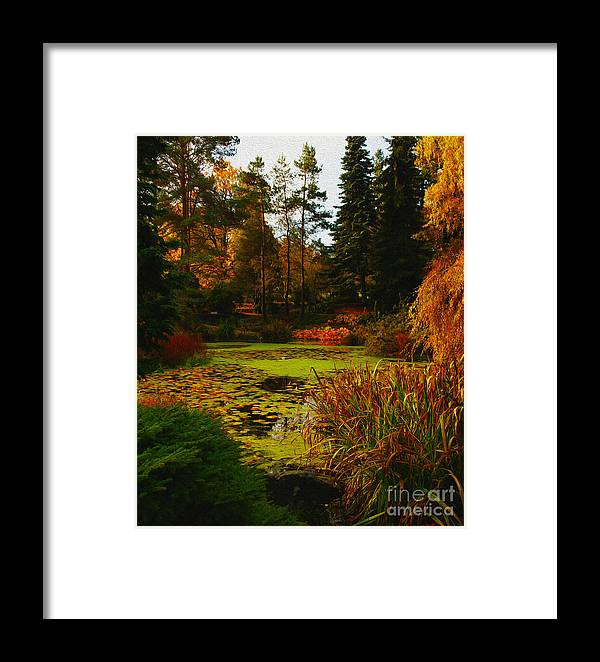 Fall Framed Print featuring the photograph The Golden Pond by James Yang