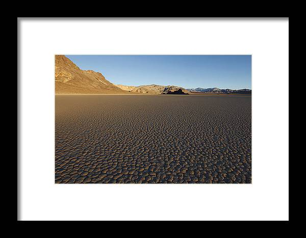 The Framed Print featuring the photograph The Grandstand by Susan Rovira