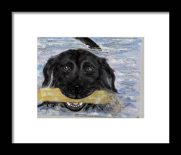 Sketched Portrait Of Black Lab In The Swim Done With Colored Pencil And Computer Paint With Framed Print featuring the mixed media The Great Swim by Desline Vitto
