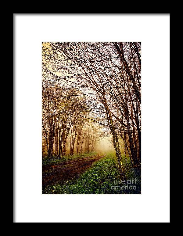 North Carolina Framed Print featuring the photograph The Guiding Light by Dan Carmichael