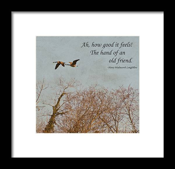 Geese Framed Print featuring the photograph The Hand Of Friendship by Kerri Farley