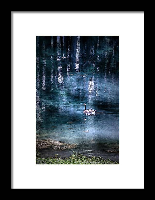 Goose Framed Print featuring the mixed media The Last Goose by John Haldane