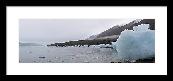 College Fjord Framed Print featuring the photograph The Lineup by Ted Raynor