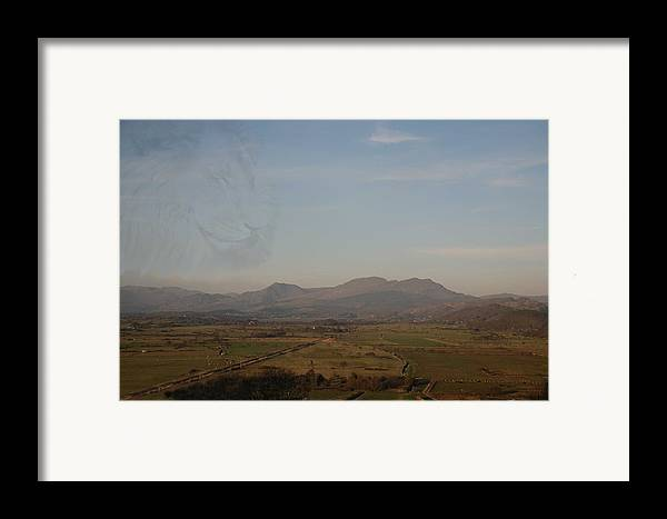 Lions Framed Print featuring the photograph The Lion by Christopher Rowlands